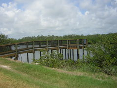 Picture of Wildcat Cove Preserve